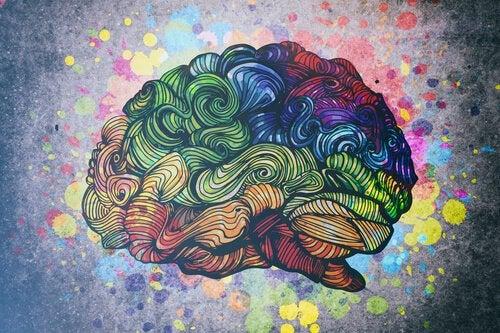 Ontdek de 8 soorten intelligentie