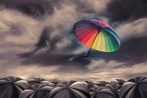 Drama Paraplu Wind