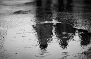 Druppels Regen Die In Een Plas Vallen En Je Doen Nadenken Over De Dingen Die Je Meemaakt