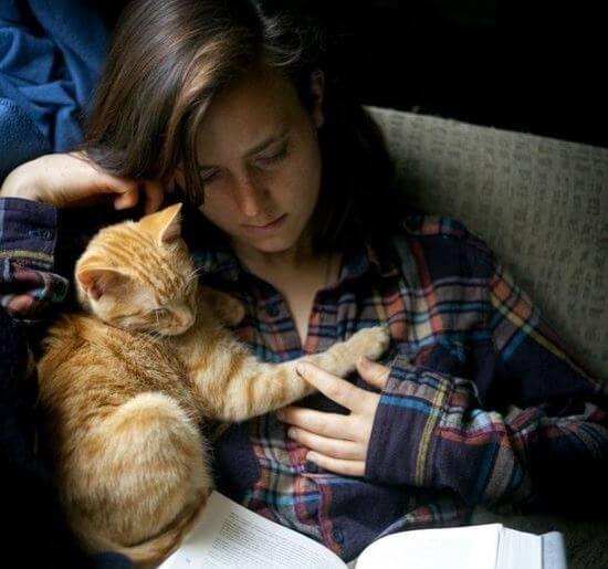 Knuffelen met Kat