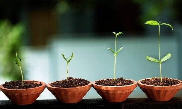 Acht tekenen van emotionele groei