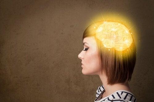 Hoe onze hersenen herinneringen reconstrueren