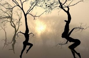 Gelukkiger Leven Stabiliteit Verandering