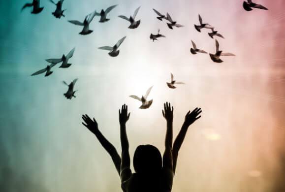 De vier wetten van spiritualiteit