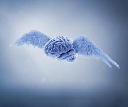 Hersenen met vleugels