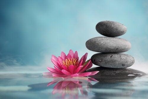 29 zen-gezegdes om je te inspireren