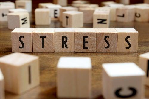 Hoe stress onze gezondheid aantast