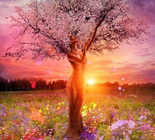 De boom verliest zijn bladeren, maar blijft zelf overeind staan