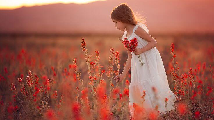 Meisje Plukt Bloemen