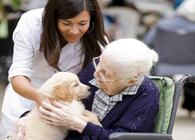 Alzheimerpatiënt met Hulphond