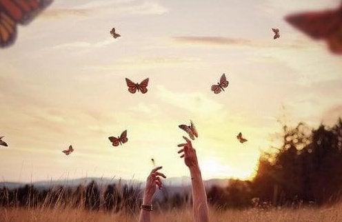 Vlinders Vangen