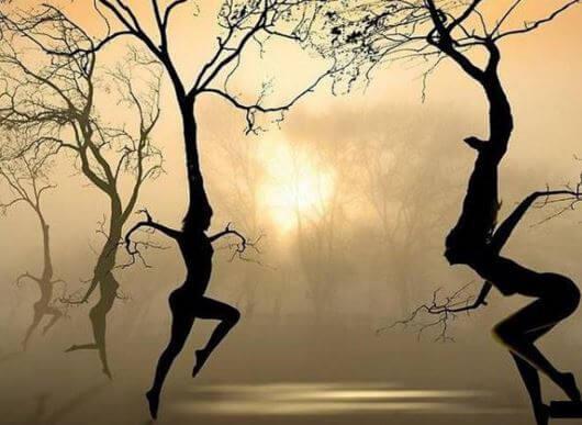 Vrouwen als Bomen