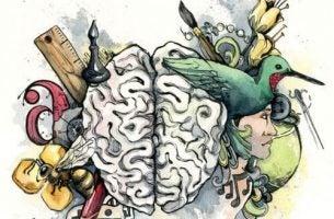 Soorten Intelligentie