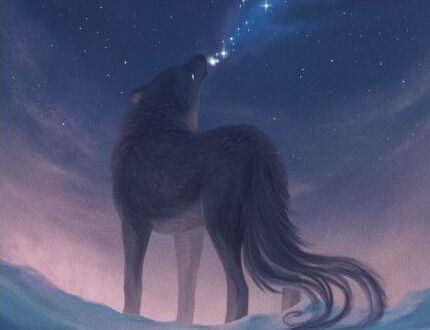 Een Wolf Die Huilt In De Nacht En Geen Ingehouden Emoties Heeft