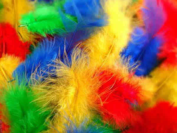 Synesthesie: geluiden zien, kleuren horen en voorwerpen proeven