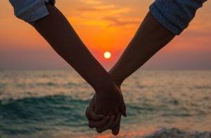Twilight Liefde Volwassen Liefde