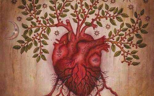 Leer je gevoelens begrijpen