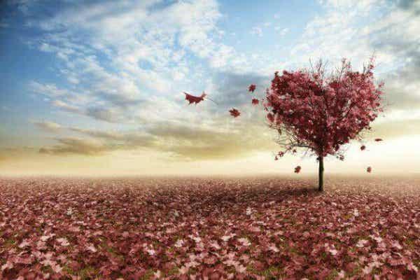 Drie visies op de liefde van Erich Fromm