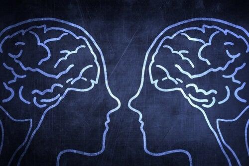 Spiegelneuronen en empathie
