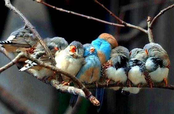 Als het leven je machtig mooie mensen schenkt, is dat omdat je het verdient
