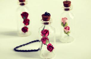 Drie Flesjes Met Roosjes Erin Die Symbool Staan Voor Het Belang Van Je Zelfliefde Vergroten
