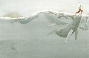 Een Man Die Op Walvissen Loopt Omdat Hij Kijkt Waar Hij Loopt In Plaats Van De Schuld Te Geven Aan De Walvissen