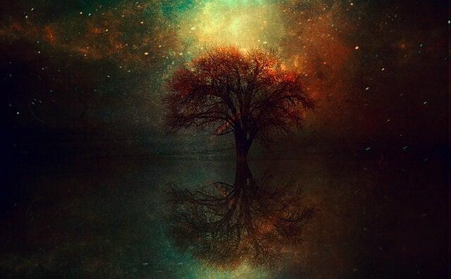 Schilderij Van Een Boom Die Weerspiegeld Wordt In Het Water Als Symbool Voor Je Geest Ontspannen Met Meditatie