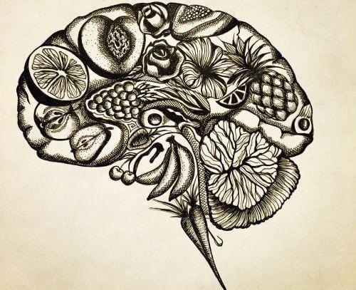 Hersenen Met Bloemen En Vruchten Erin Want Je Kunt Jezelf Ziek Denken, Maar Je Kunt Jezelf Ook Beter Denken