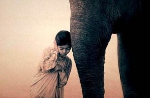 Jongen Die Staat Te Mediteren Naast Een Olifant Want Hij Heeft Gehoord Je Kunt Je Geest Ontspannen Met Meditatie