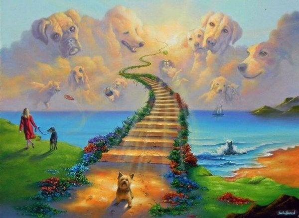 De legende van de regenboogbrug, de laatste rustplaats voor onze huisdieren