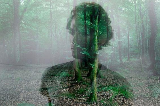 Schim Van Een Man In Het Bos