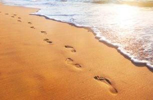 Voetsporen In Het Zand Omdat Intelligente Mensen Niet In de Voetsporen Van Anderen Als Deze Naar Een Verkeerd Doel Leiden