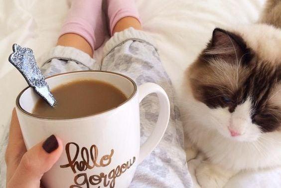Meisje Dat Een Kop Koffie Drinkt Terwijl Haar Kat Naast Haar Ligt