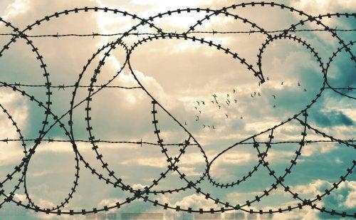 Prikkeldraad in de vorm van een hartje waar een zwerm vogels in vliegt
