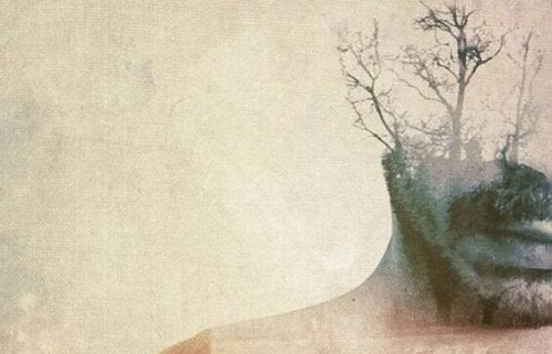 Man wiens hoofd maar voor de helft zichtbaar is, de andere helft bestaat uit bomen