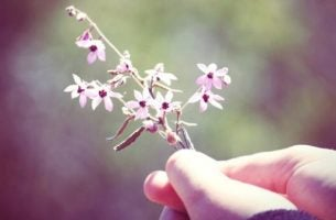 Meisje dat een takje met kleine bloemetjes vasthoudt want vriendelijkheid is goed voor alles