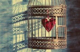 Vogelkooi met een hart erin, als symbool voor onveilige hechting.