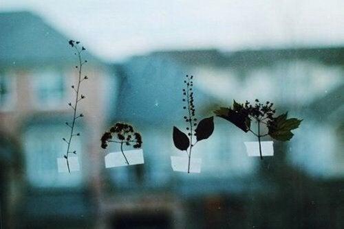Verschillende blaadjes op het raam geplakt, als voorbeeld voor hooggevoelige mensen.