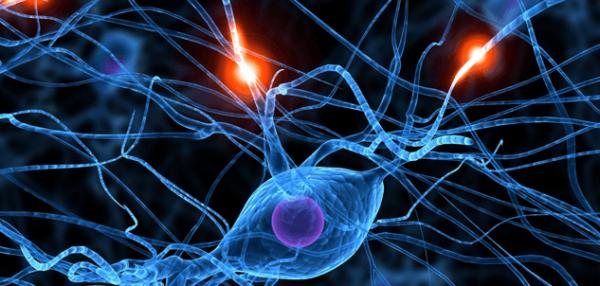 Afbeeldingen van zenuwen want we kunnen ziek worden van woede en dit heeft invloed op onze zenuwen
