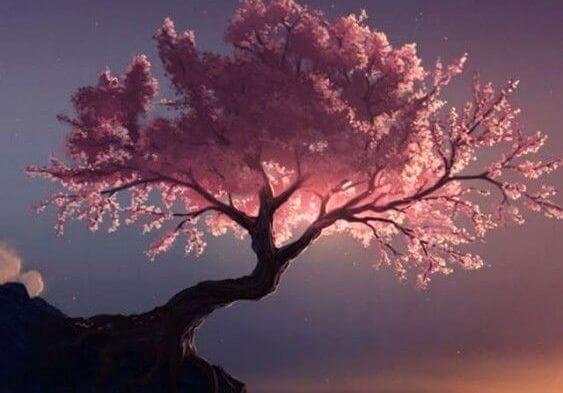 Zuiverende boomsoorten, volgens tao