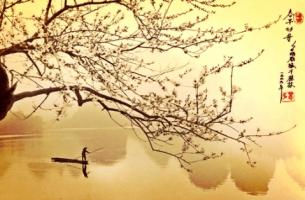 Man vaart op rivier langs de kersenbloesem als voobeeld van het moment dat we vangen door middel van haiku schrijven.