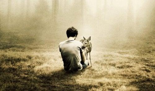 Man die alleen in het bos zit omdat hij last heeft van eenzaamheid en angst maar dan komt er een klein hertje naar hem toe