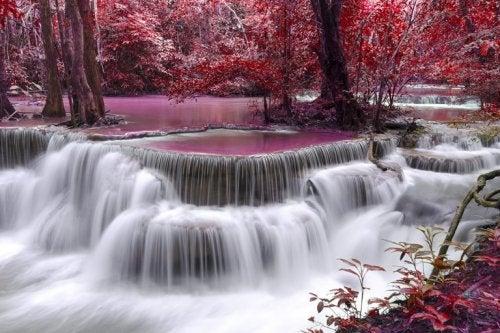 Waterval met roze bomen ernaast