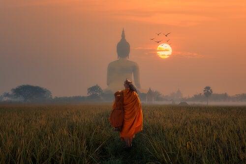 De giftige pijl: een boeddhistisch verhaal over leven in het nu