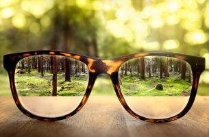 Bril die op een tafel ligt en waarachter een bos te zien is