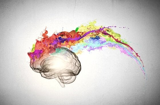 Hersenen waar allemaal kleuren uitkomen