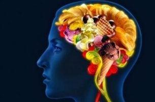 Hersenen met voedsel erin als voorbeeld van de relatie tussen emoties en obesitas
