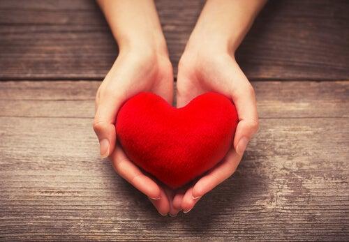Twee handen die een hartje vasthouden