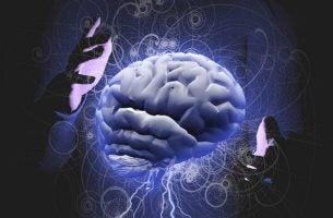Hersenen die bewerkt worden door twee handen om de mentale controle te vergroten