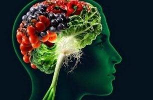 Hersenen vol met voedingsmiddelen die je geheugen verbeteren
